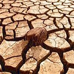small_20140323104023_400drought