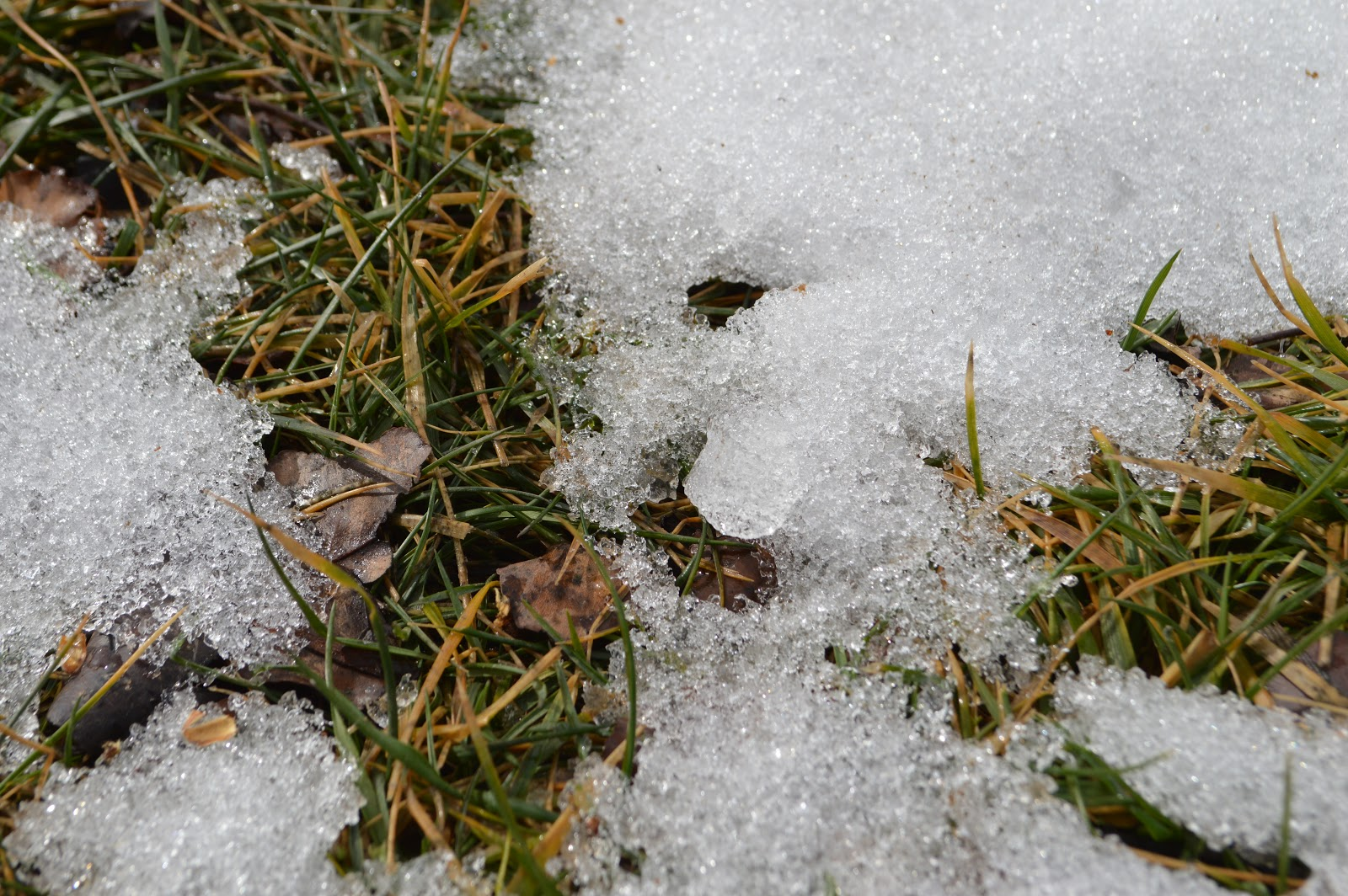 snowmelt 3